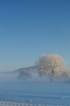 Winterlandschaft zum Träumen
